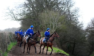 Colin Tizzard's string of racehorses return to his stable on the Dorset / Somerset border on Thursday morning.