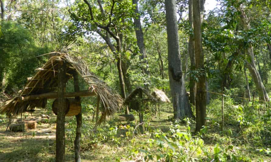 Beehive fences in Uttara Kannada.