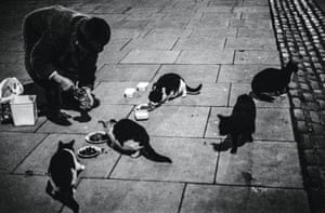 Miss Wyatt who had been feeding cats in Fitzroy Square since 1953, taken in 1978 from Jane Bown: Cats