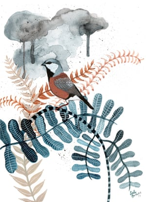 Artwork of a finch standing in ferns under stormclouds