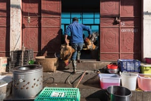A poulterer carries chicken at the market, in Xizhou, Yunnan, China.