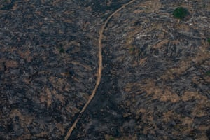 A section of the Amazon rainforest that has been decimated by wildfires in Porto Velho, Brazil. on August 25, 2019.