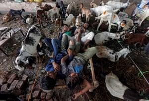 Kolkata, India Traders sleep on a cot amid the goats at a livestock market ahead of the Eid al-Adha festival.