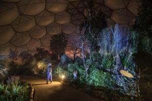 A man walking inside the illuminated Mediterranean biome