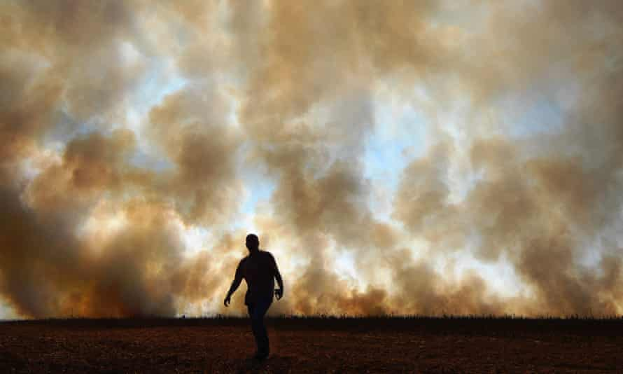 Smoke rises from an illegally lit fire near a rainforest reserve, in Sinop, Brazil
