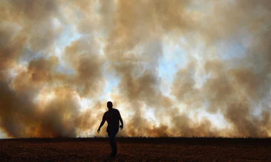 Asap mengepul dari api yang menyala secara ilegal di dekat cagar alam hutan hujan, di Sinop, Brasil