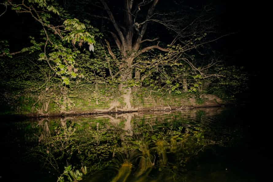 The River Dart at night, as seen from the canoe.