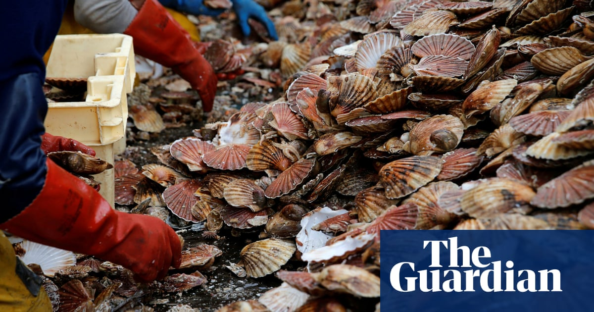 France And Uk Agree New Deal To End Scallop Wars Business The