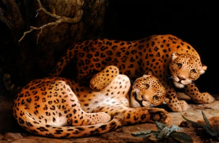 Two Leopards by George Stubbs (c1776)