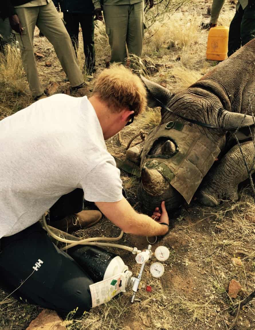 Prince Harry and a Rhino