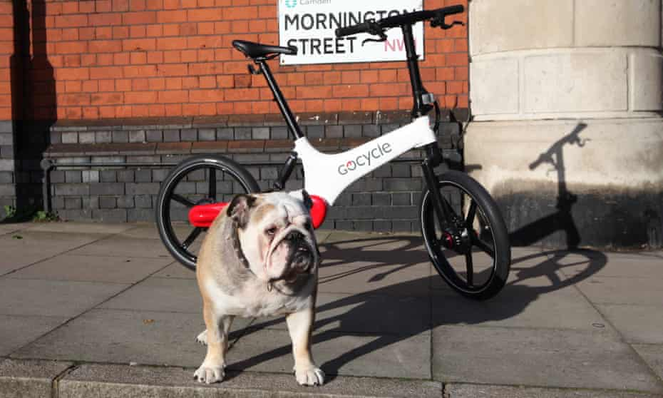 Gocycle electric bike propped against a wall with a bulldog standing guard