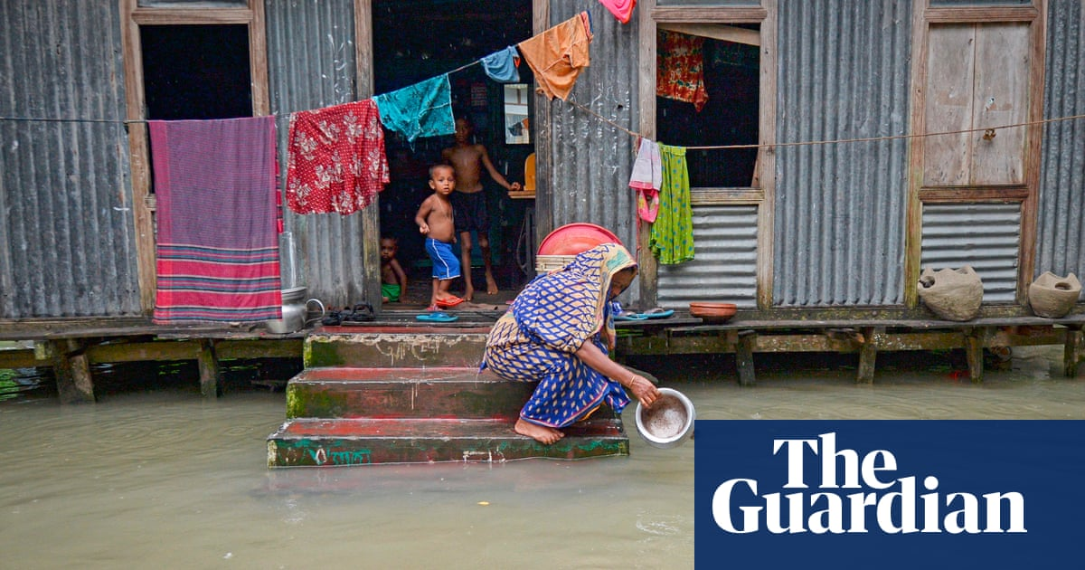 'Use your £11bn climate fund to pay for family planning,' UK told
