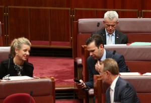 One Nation senator Malcolm Roberts votes with the government against establishing a senate inquiry into the Attorney General George Brandis and his dealings in the Bell matter.