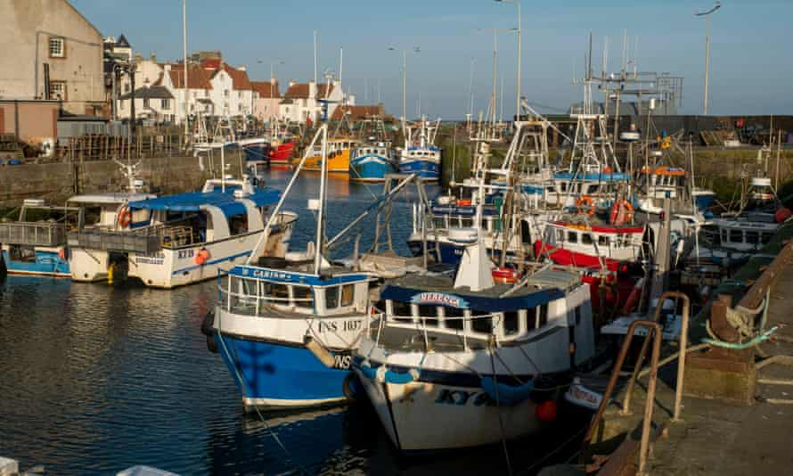 Fishing boats tied up in Pittenweem harbour, Scotland, 22 March 2020