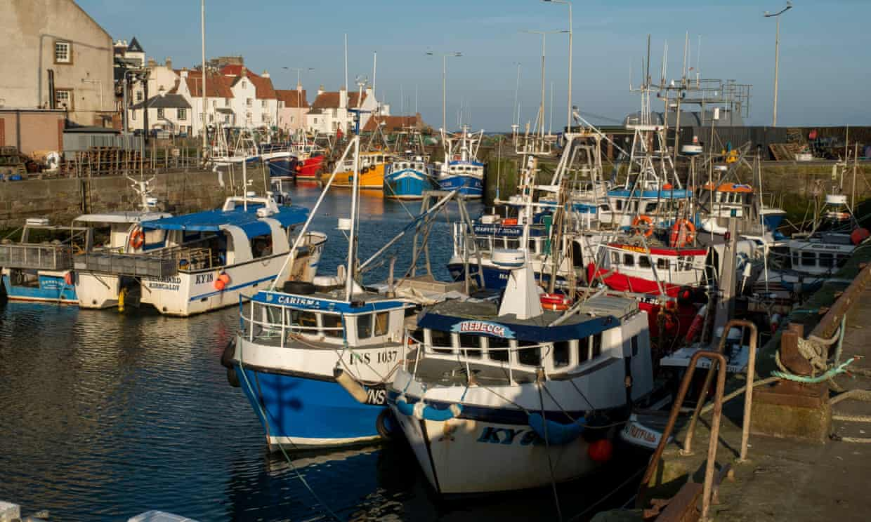 Inshore fishing boats moored up in harbour