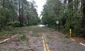 Fallen trees and branches at Hilton Head Island, South Carolina.