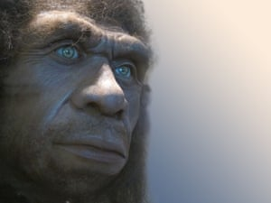 A recreation of the face of a Neanderthal.