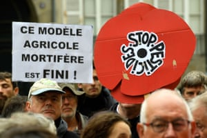 Protesters in France hold a poppy emblem of the anti-pesticide movement 'Nous voulons des coquelicots' ('We want poppies') in support of a ban on pesticides within 150 metres of homes