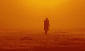 It's on the horizon … Blade Runner 2049.