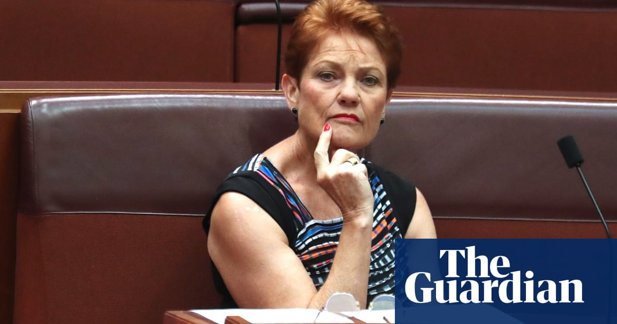 One Nation MPs lost more followers than other Australian politicians in Twitter purge of QAnon accounts – The Guardian