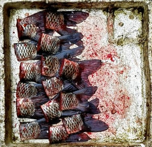 A tray of fish tails from a food market in Shanghai's Old Town.