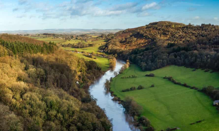 The River Wye from the Symonds Yat Rock