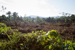 Deforestation seen near Tinkareni in the Amazon rainforest, Peru. Cool Earth rainforest charity is working with locals to make their crop cultivation more efficient and reduce slash and burn farming.