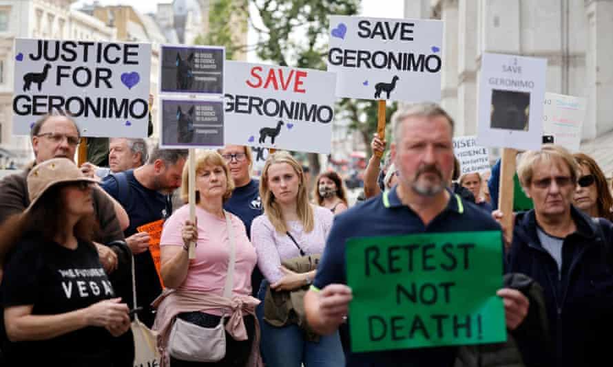 Protesters demonstrate against Defra's ruling in London last week.