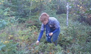 Alys Fowler forages for berries.