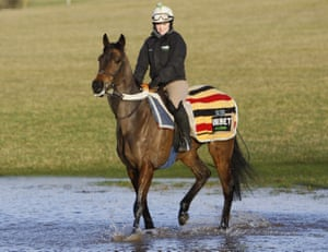 Epatante and Chelsea Eggleton have a dip in the water at Nicky Henderson's stables.