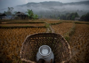 Only cannister in basket among fields in mountain visible