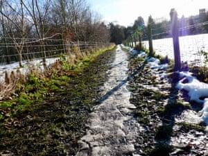 Ice line on a footpath