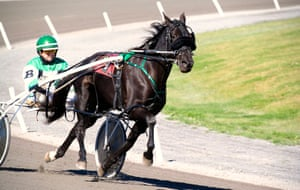Harness Racing, Charlottetown Driving Park, Prince Edward Island, Canada