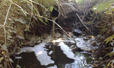 Dairy farm pollution along the River Culm, that flows through the Blackdown Hills in Devon, September 2015.