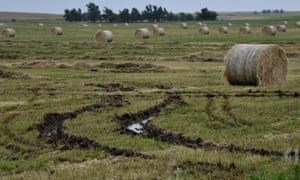 Hay rolls damaged by flood waters lie soaked on a farm in Alva, Oklahoma, next to flooded tracks left by farm vehicles.