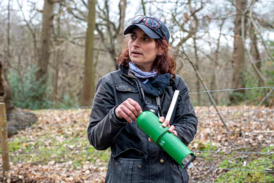 Ecologist Huma Pearce listens to the woodland sounds in Lesnes Abbey Wood in south-east London