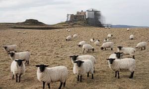 Lindisfarne Castle restoration