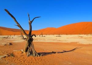 Sossusvlei, Namib-Naukluft national park, Namibia, by Jocelyn Middleton