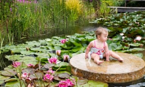 16-month-old Olivia enjoys Mary Mackie's plant-filled pool near Newark
