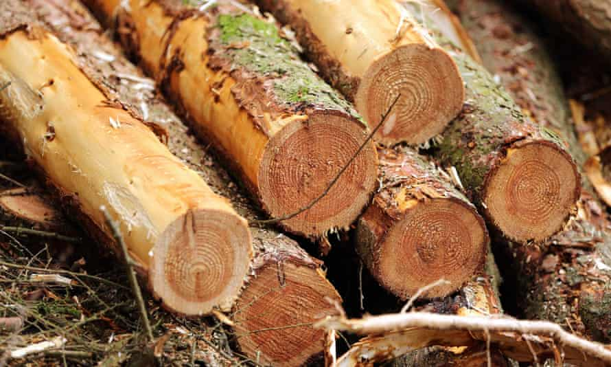 The Hermal Group had said it would begin shutting down Victoria's Heyfield timber mill in August and job losses would follow.