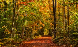 10 Unmissable Autumn Experiences In Ontario Discover