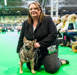 Lynn Pallatina  at Crufts dog show 2019 with Swedish vallhund Starvon All Eyes on Me At Valltineya (Loki) who won best of breed