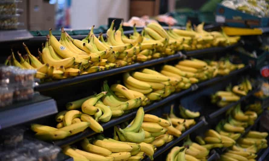 Bananas on a grocery store shelf.