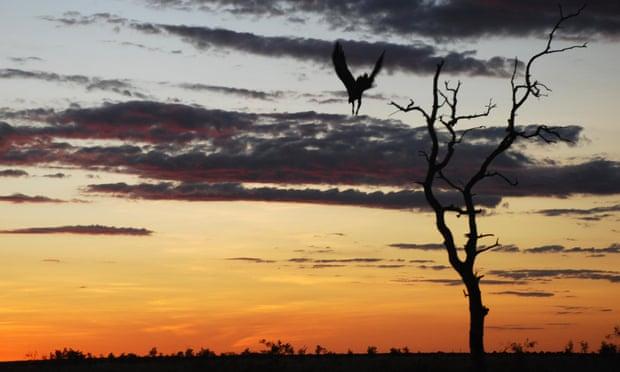 Aboriginal land... Australia?