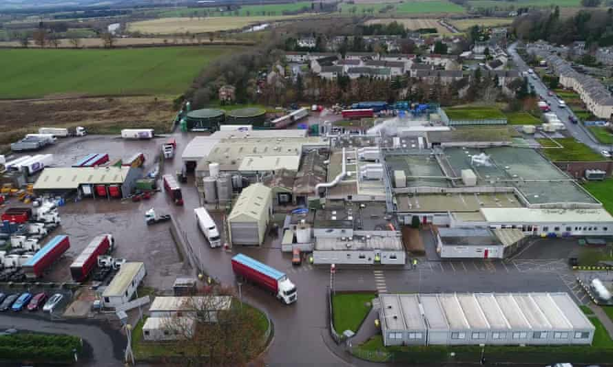 Tesco handed the full report on Coupar Angus site inspection to the Food Standards Agency after being contacted by the Guardian and ITV.