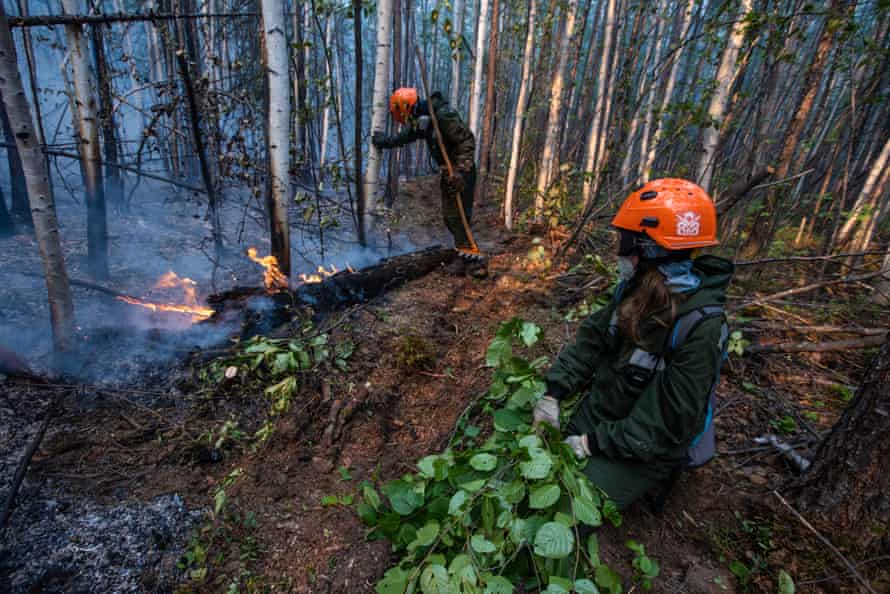 firefighters tackle a blaze amid birch trees