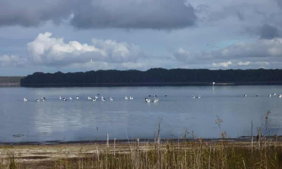 Lake Wollumboola
