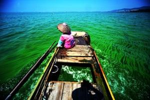 Algae in the water of Lake Taihu in China's Jiangsu province