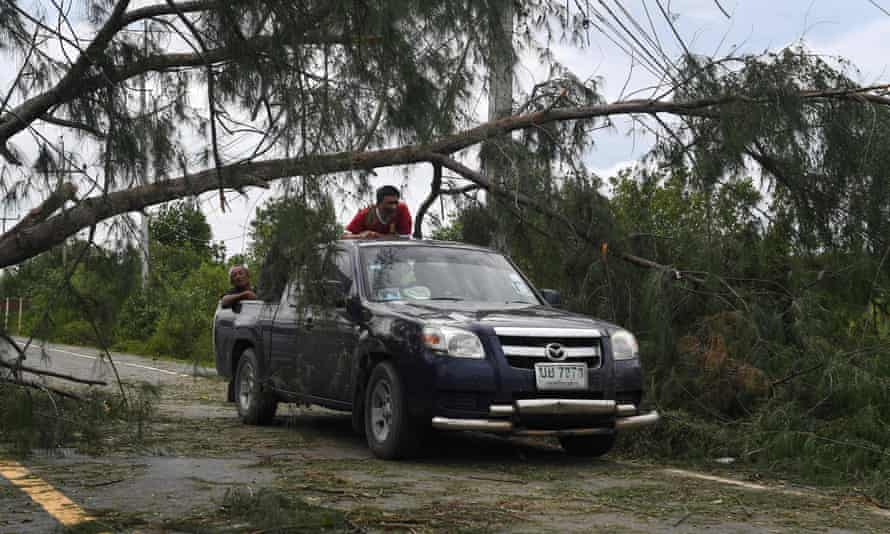 A fallen tree in the aftermath of tropical storm Pabuk in the southern Thai province of Nakhon Si Thammarat on Saturday.