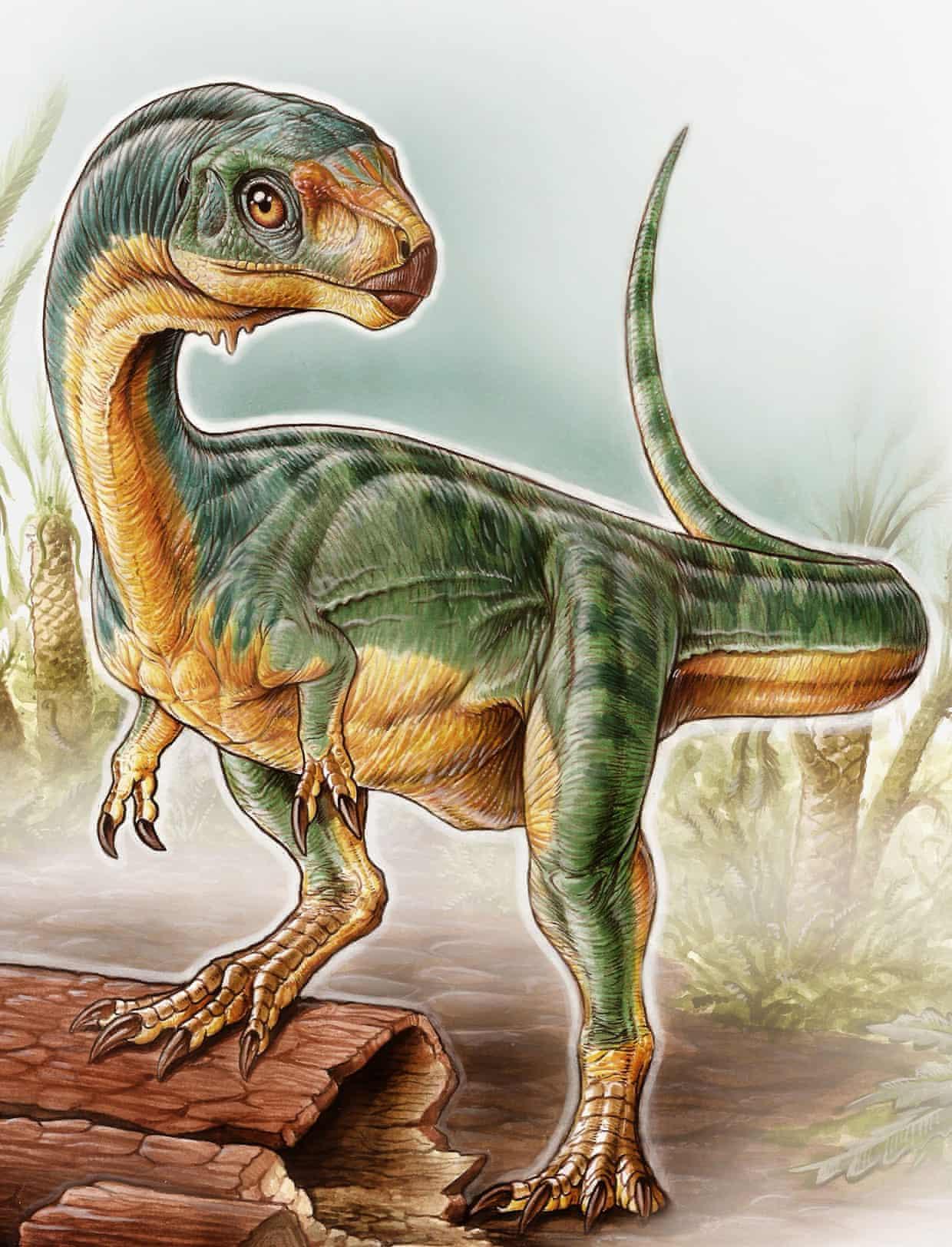Most bizarre dinosaur ever found